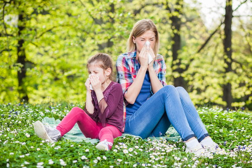 How to Protect Yourself from Pollen