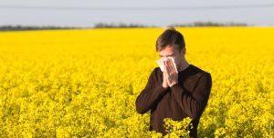 best-hay-fever-allergist-dr-nyc-01