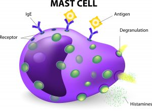 mast-cell-stabilization-allergy-treatment-top-nyc-doctor-02