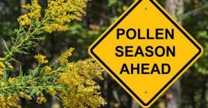 pollen-season-allergist-specialist-nyc-01